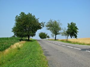Country Road, Take Me Home on the Ergordica